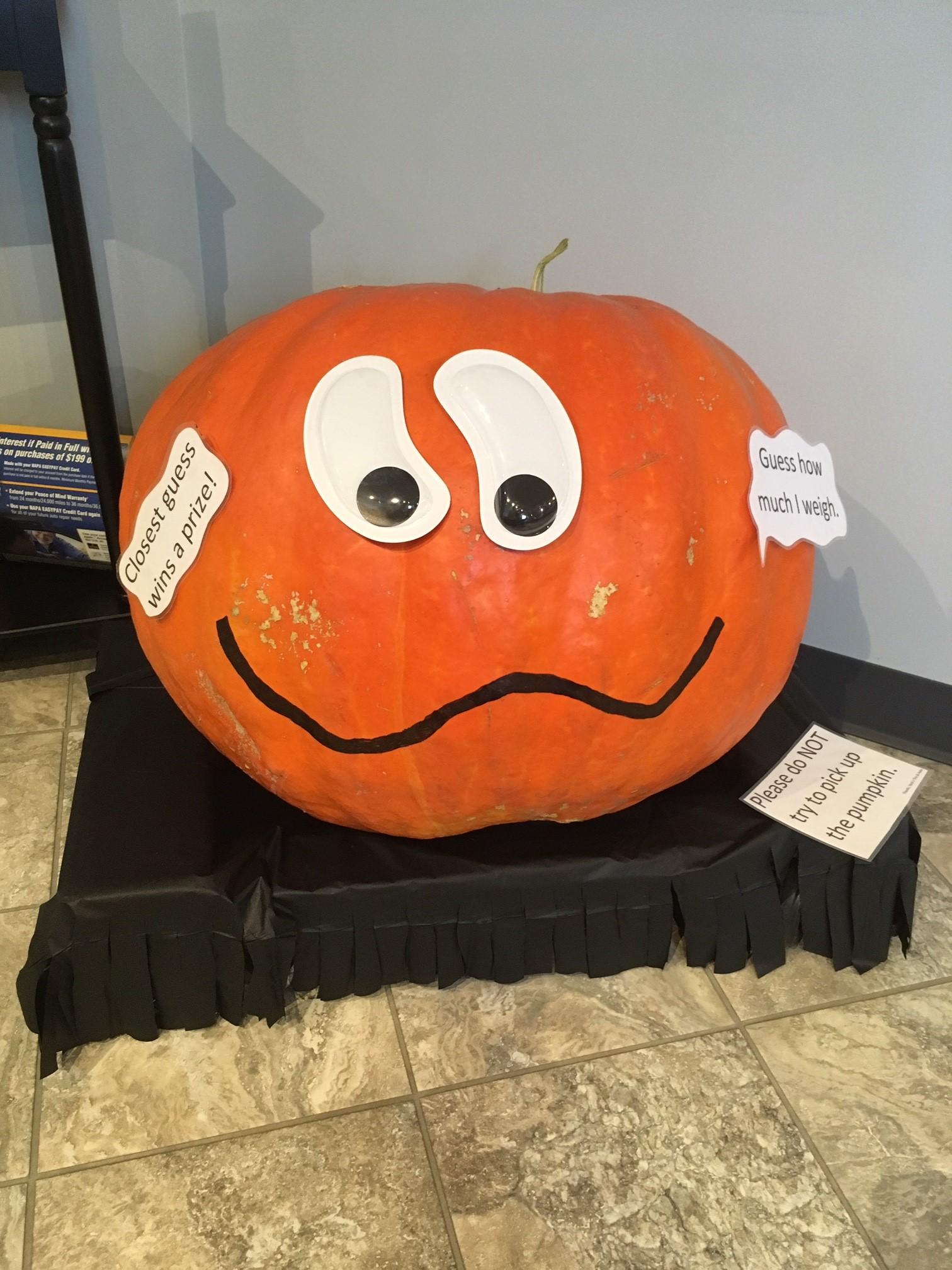 Congratulations to the winners of our 12th Annual Guess the Weight of our Giant Pumpkin Contest!